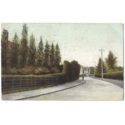 MAGHULL The Park, Nr Liverpool Postcard By P& Co Postmark Maghull 1906 • 7.95£
