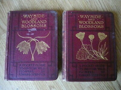 Two Vintage Books: Wayside & Woodland Blossoms Series I And II, Edward Step • 15£