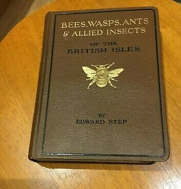 £26.90 • Buy Wayside& W. Series: Bees, Wasps, Ants & Allied Insects/ Edward Step.  Warne 1932