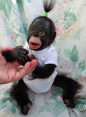 Reborn Chimp Baby Boy Monkey Cici 3lb8oz 17  JosyNN BABY BUT NOT A BABY ! FUN ! • 125£