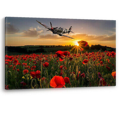 £29.95 • Buy Poppy Field Spitfire Poppies Remembrance Sunday Canvas Wall Art Picture Print