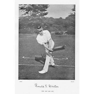 CRICKET G.E Winter, Cambridge University CC - Antique Photographic Print C1899 • 9.95£