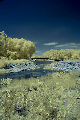 Canon G1-X 590nm SUPER COLOR Infrared IR Converted Large Sensor Camera • 439.92£
