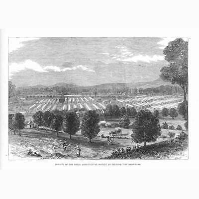 £9.95 • Buy TAUNTON View Of The Royal Agricultural Society Show Yard - Antique Print 1875