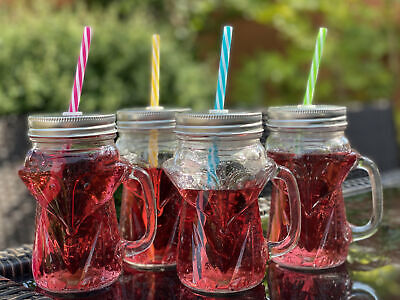 Set Of 4 Glass Fox Novelty Drinking Glasses / Jars With Lid And Straw • 11.99£