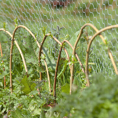 Roll Chicken Wire Mesh Galvanised Fencing Fence Netting Garden Plant Protection • 15.54£