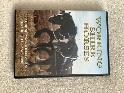 Working Shire Horses [DVD] Anne Williams With Leo And Lupin • 2.75£