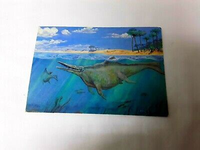 Very Rare Prehistoric Animal Postcard From Ichthyosaur National Monument • 7.87£