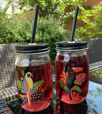 4 Glass Toucan Parrot Drinking Mason Jars With Lid And Reusable Straw • 12.99£