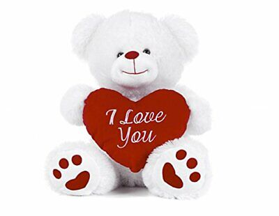 White Teddy Bear Holding Red Heart With  I Love You  Written On It (White, • 15.24£