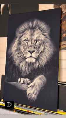 AU89.95 • Buy Lions Oil Print Framed Canvas Wooden Frame 90x60 Cm Streched On Canvas
