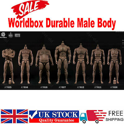 £29.99 • Buy Worldbox 1/6 Scale Male Body Figure Model Fit Hot Toys Phicen Head Crazy Durable