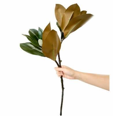 $15.99 • Buy Large 30in Magnolia Leaves With 2 Sprays-Stunning Floral Display