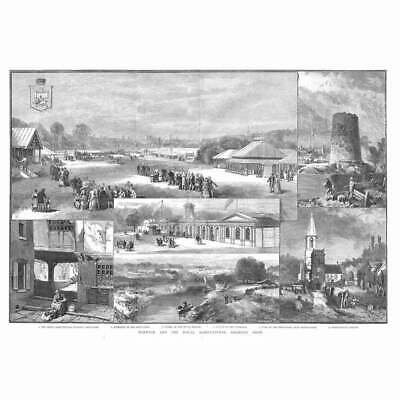 £16.95 • Buy NORWICH View Of The Royal Agricultural Society Show - Antique Print 1886