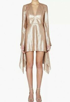 AU100 • Buy Sass & Bide 'no Touching' Rose Sequin Dress - SZ AU12 RPP$755