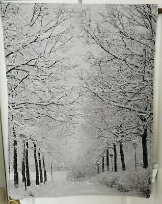 £17.99 • Buy Fibre Optic Winter Scene Wall Hanging Tapestry Ideal Christmas Decoration/Gift