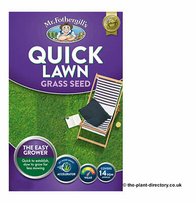 £11.99 • Buy Quick Lawn Grass Seed 500g Which Covers 14m2