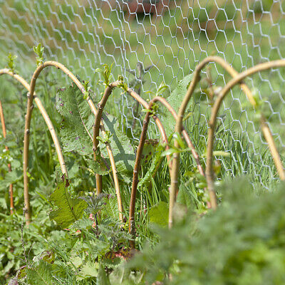 £19.95 • Buy Roll Chicken Wire Mesh Galvanised Fencing Fence Netting Garden Plant Protection
