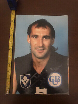 AU9.50 • Buy Afl Memorabilia Carlton Blues, Signed Cardboard With Folding Stand