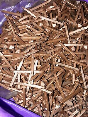 £45 • Buy 1kg Solid Copper Square Shaft Rose Head Boat Nails 1.5in