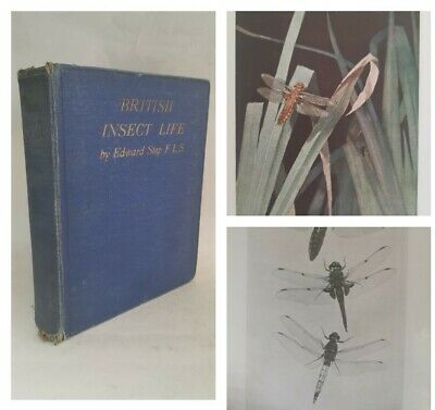 £14.99 • Buy British Insect Life By Edward Step Illustrated Colour Plates 1929