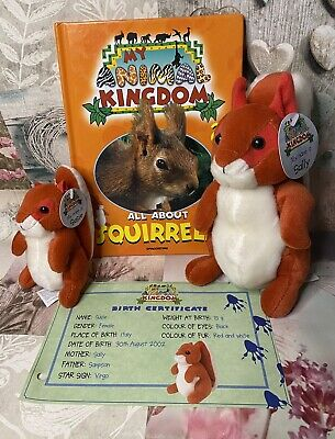 £16.99 • Buy DeAGOSTINI My Animal Kingdom All About Squirrels 29 Soft Toys Book Certificate