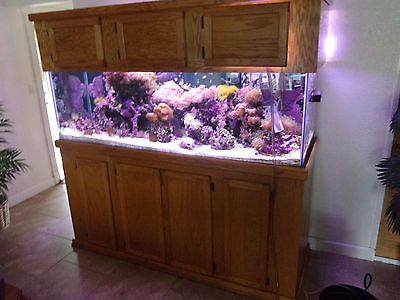 AU1.32 • Buy PLANS TO BUILD Your Own STAND For A 29, 55, 75, 90, Or 135 Gallon FISH TANK