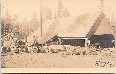 $19.99 • Buy RPPC Placer County CA Sugar Pine Lumber Mill Logging Scene Early 1900s