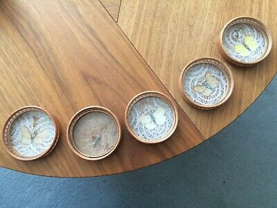 £20 • Buy Set Of 5 Vintage Bamboo + Perspex Pressed Butterfly Coasters