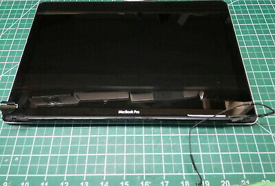 $37.99 • Buy Apple MacBook Pro 15.4  A1286 2010 LCD Screen Complete Assembly #l2241