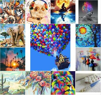 AU14.95 • Buy  40x50cm Paint By Numbers Kit DIY Paint On Canvas Frameless Acrylic Painting Kit