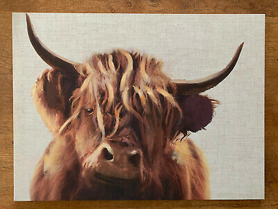 £17 • Buy NEXT Highland Cow Canvas Print Wall Art Good Condition