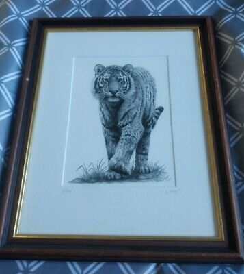 £8.99 • Buy Framed Tiger Animal Print Pictures By Anthony Wyatt Signed