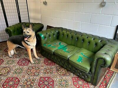 £295 • Buy Vintage Retro Green Leather Old Chesterfield Suite Sofa & Club Chair Restoration