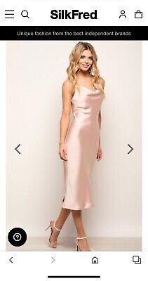 £45 • Buy Blush Satin Pink Silk Fred Dress Size 12 NEW WITH TAGS