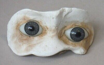 £14.49 • Buy Antique Stationary Glass Doll Eyes Set In Plaster Paperweight Grey Fixed P1827