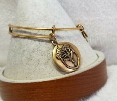 AU2.66 • Buy Alex And Ani  Gold Unexpected Miracles Charm  Bangle Bracelet - Gold   👼