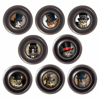 Brass Or Pewter Knobs Steampunk Cats 32mm Cupboard Drawer Door Handles Decorated • 3.50£