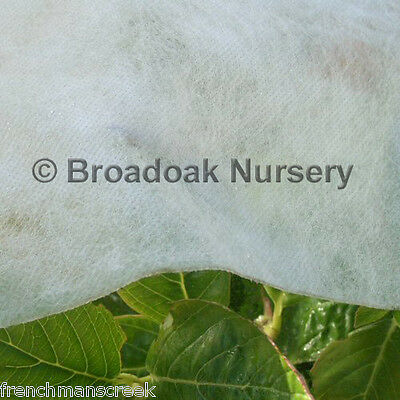 £10.95 • Buy 10m X 1.5m Heavyweight Horticultural Garden Fleece, 30gsm Plant Frost Protection