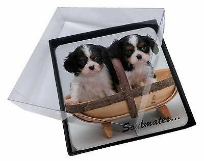 £9.98 • Buy 4x King Charles Puppies 'Soulmates' Picture Table Coasters Set In Gift, SOUL-55C