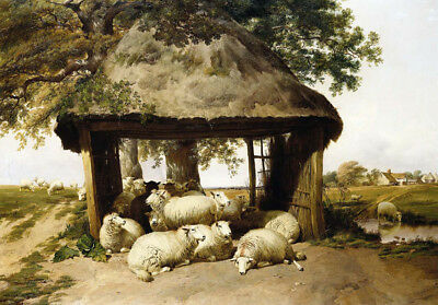 THOMAS SIDNEY COOPER  Sheep Resting Under A Shelter  Various SIZES Available • 64£