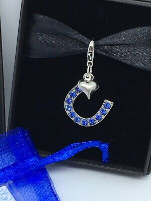 Wedding Gift For The Bride Something Blue Lucky Horseshoe Charm & Sixpence Coin • 5.96£