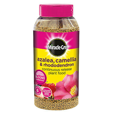 Miracle-Gro Azalea, Camellia & Rhododendron Continuous Release Plant Food 1kg • 7.75£