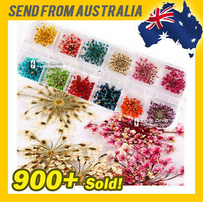 AU8.50 • Buy 12 Color Dried Flowers Floral Nail Art 3D Decal Freebie Blossom Manicure 3016