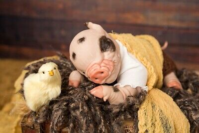 $ CDN181.49 • Buy Reborn Baby Piglet, Reborn Animals, Reborn Dolls