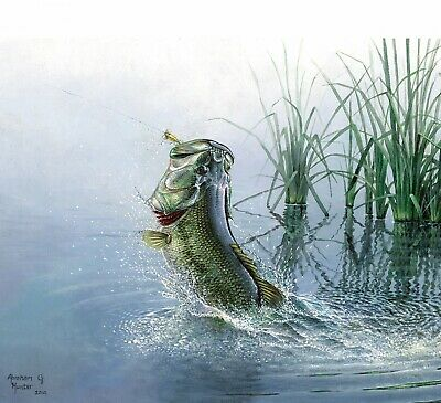 Fish & Fowl Bass By The Panel Digital Cotton Print 36 X 43 Inches • 15.95$