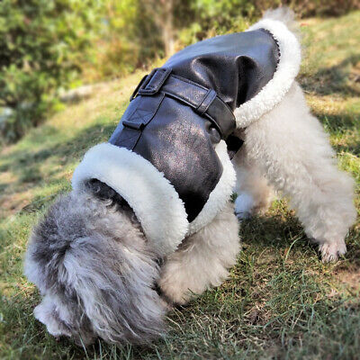 £11.99 • Buy Small Dog Coats For Winter Black Waterproof Leather Pet Clothes Fleece Jackets