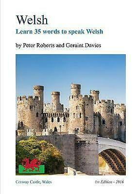 WELSH - Learn 35 Words To Speak Welsh, Brand New, Free P&P In The UK • 9.01£