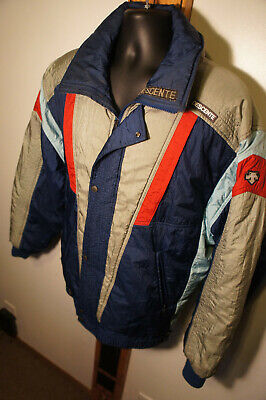 $65 • Buy Vintage Descente XL Entrant SC Vtg Retro Ski Parka Snowboard Jacket Coat  O44