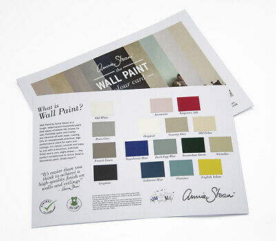 Annie Sloan Wall Paint 2.5l And Tester Pots HALF PRICE • 2.47£